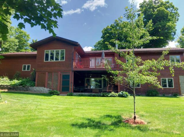49547 397th Place, Palisade, MN 56469 (#5263166) :: The Michael Kaslow Team