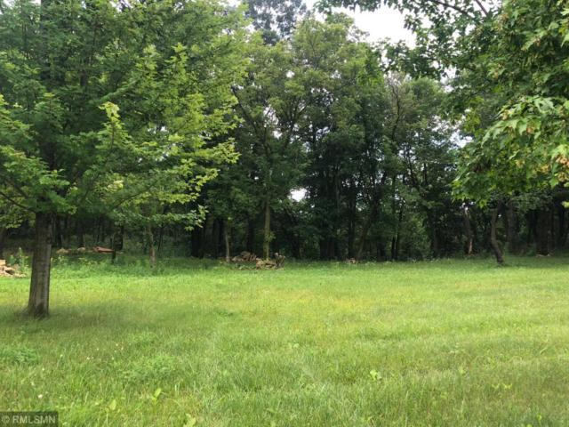 378 Peaceable Hill (Lot 3) Road, Hudson, WI 54016 (#5263649) :: Olsen Real Estate Group