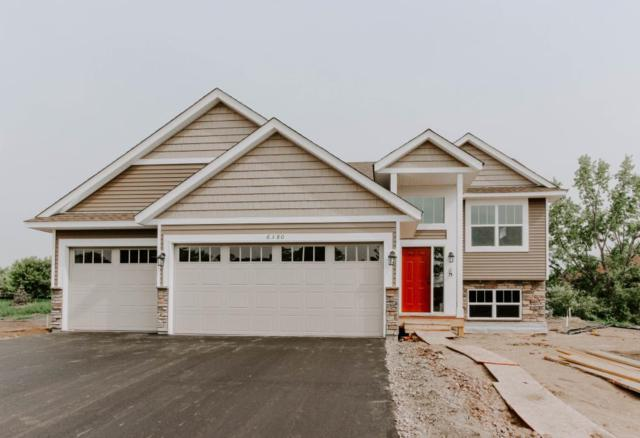 20420 Rush Meadow Lane, Rogers, MN 55374 (#5264901) :: Hergenrother Group