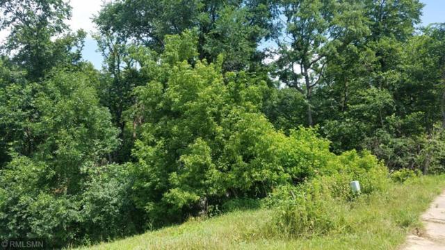 328 Limestone Road, Cannon Falls, MN 55009 (#5265364) :: House Hunters Minnesota- Keller Williams Classic Realty NW