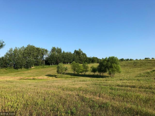 2511 160th Avenue, Glenwood City, WI 54013 (MLS #5269119) :: The Hergenrother Realty Group