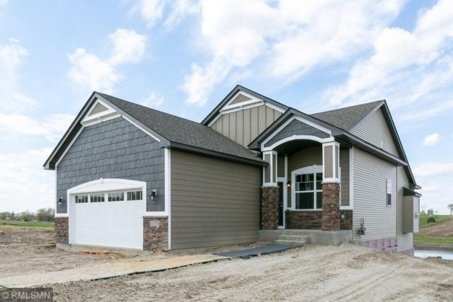 10250 74th Street, Otsego, MN 55301 (#5271808) :: House Hunters Minnesota- Keller Williams Classic Realty NW