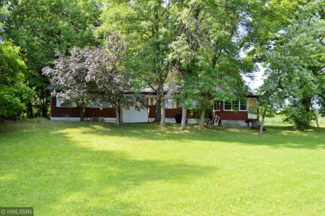 36720 653rd Avenue, Watkins, MN 55389 (MLS #5273604) :: The Hergenrother Realty Group
