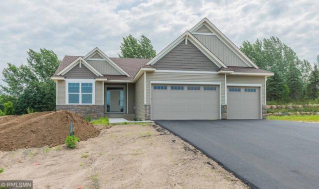 16781 72nd Circle Ne, Otsego, MN 55330 (#5273983) :: House Hunters Minnesota- Keller Williams Classic Realty NW
