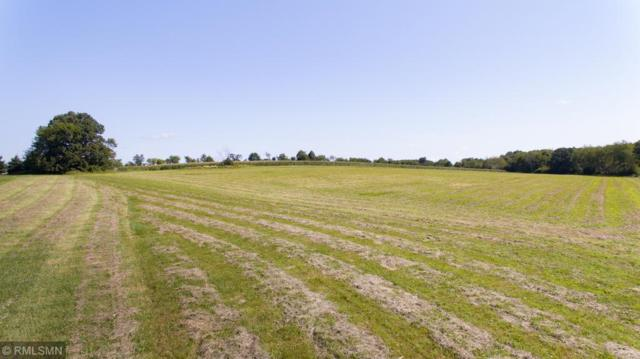 1467 County Road D, Glenwood City, WI 54013 (MLS #5274537) :: The Hergenrother Realty Group