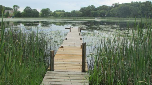 TBD Grebe Lane, Dent, MN 56528 (MLS #5274835) :: The Hergenrother Realty Group