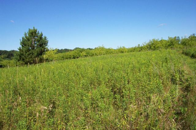 0 11th Avenue, Menomonie, WI 54751 (MLS #5276836) :: The Hergenrother Realty Group