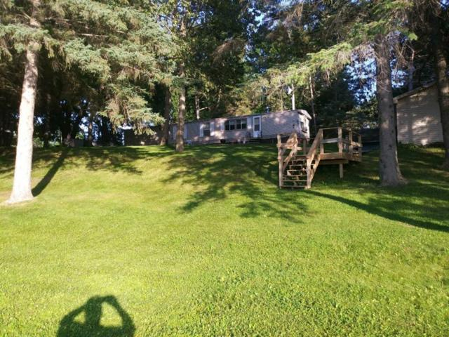 30595 392nd Place, Aitkin, MN 56431 (#5277110) :: The Michael Kaslow Team