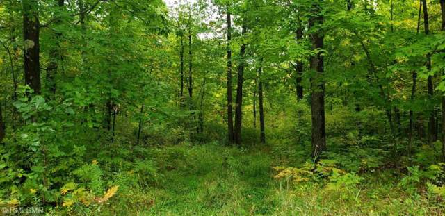XXX 140th Avenue, Milaca, MN 56353 (MLS #5292037) :: The Hergenrother Realty Group