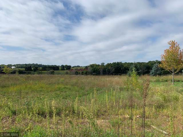 5320 Pine Island Road, Woodbury, MN 55129 (MLS #5293525) :: The Hergenrother Realty Group