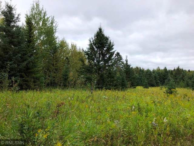 TBD County Rd 134, Lake Jessie Twp, MN 56637 (#5293653) :: House Hunters Minnesota- Keller Williams Classic Realty NW