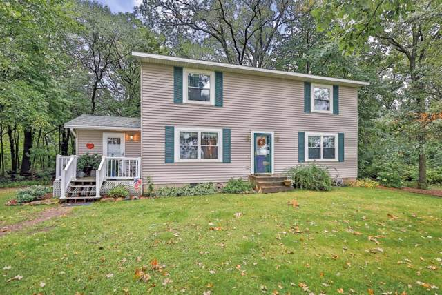 36640 Kost Trail, North Branch, MN 55056 (MLS #5294071) :: The Hergenrother Realty Group