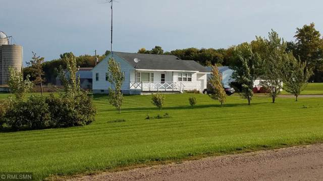 40256 County 1, Bertha, MN 56437 (MLS #5294481) :: The Hergenrother Realty Group
