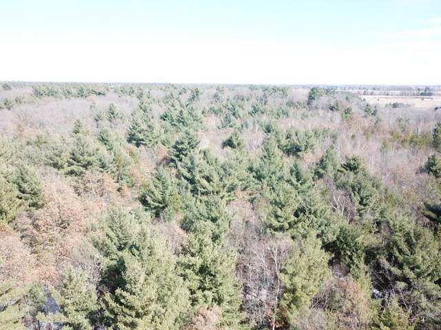 Lot 2 Centennial Street, Grantsburg, WI 54840 (MLS #5294511) :: The Hergenrother Realty Group