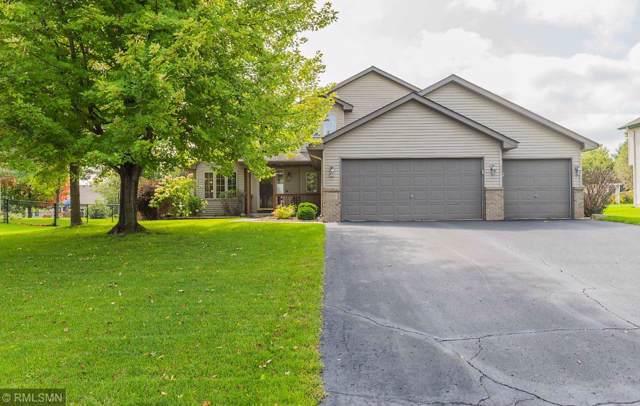 21159 Goldenrod Lane, Rogers, MN 55374 (#5295303) :: House Hunters Minnesota- Keller Williams Classic Realty NW