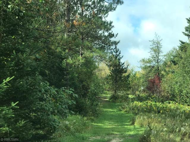 TBD State Highway 371, Backus, MN 56435 (MLS #5295705) :: The Hergenrother Realty Group