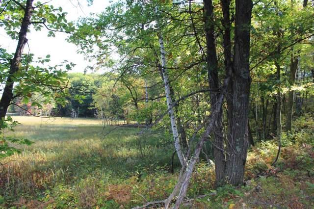 xxx Timber Trail Road Trail, Kathio Twp, MN 56359 (MLS #5296238) :: The Hergenrother Realty Group