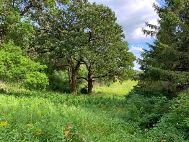 XXX Pheasant Hill Road NE, Osakis Twp, MN 56360 (#5297227) :: HergGroup Northwest