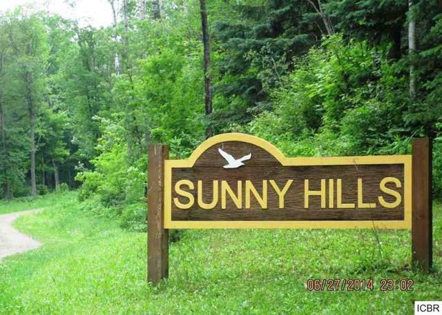 TBD-2 Ashley Ln, Grand Rapids, MN 55744 (#5303810) :: House Hunters Minnesota- Keller Williams Classic Realty NW