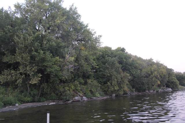 84025 Ridge Creek Drive, Clinton, MN 56225 (#5320628) :: Bre Berry & Company