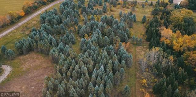 1708 Majestic Pines Trail, Afton, MN 55001 (#5320862) :: The Michael Kaslow Team