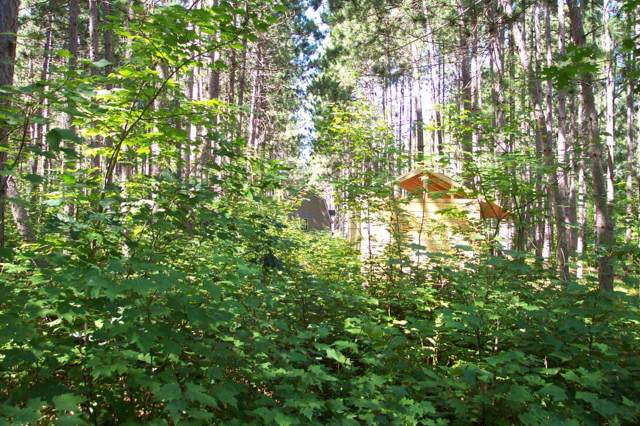 Lot 404 N Basswood Drive, Sand Lake Twp, WI 54893 (#5321102) :: The Michael Kaslow Team