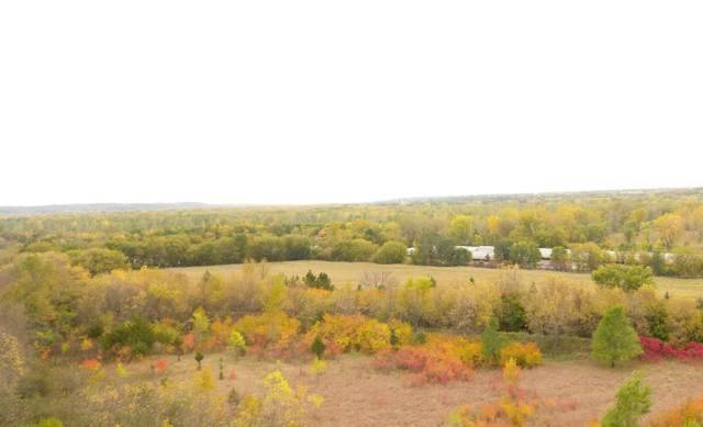XXX Ottawa Road, Kasota Twp, MN 56082 (#5321886) :: The Sarenpa Team