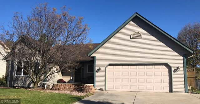 8705 Chanhassen Hills Drive N, Chanhassen, MN 55317 (#5323688) :: The Janetkhan Group