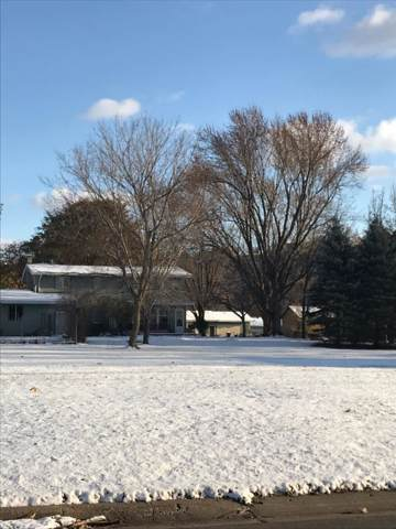 1009 W Irving Street, Lake City, MN 55041 (#5330539) :: House Hunters Minnesota- Keller Williams Classic Realty NW
