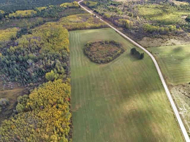 29XXX Cty Road 340 Land, Bigfork, MN 56628 (#5330787) :: Bre Berry & Company