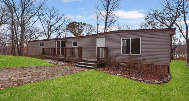 30484 White Pine Circle, Cushing, MN 56443 (#5331383) :: The Michael Kaslow Team