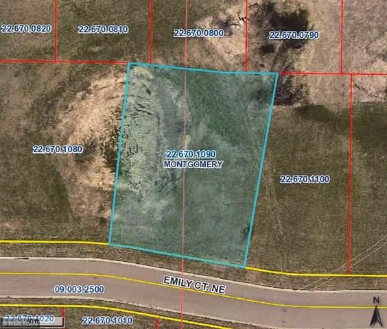 905 Emily Court NE, Montgomery, MN 56069 (#5331425) :: The Sarenpa Team