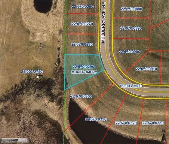 917 Mulberry Avenue NE, Montgomery, MN 56069 (#5331444) :: House Hunters Minnesota- Keller Williams Classic Realty NW