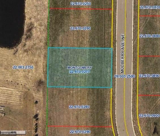 921 Mulberry Avenue NE, Montgomery, MN 56069 (#5331450) :: House Hunters Minnesota- Keller Williams Classic Realty NW