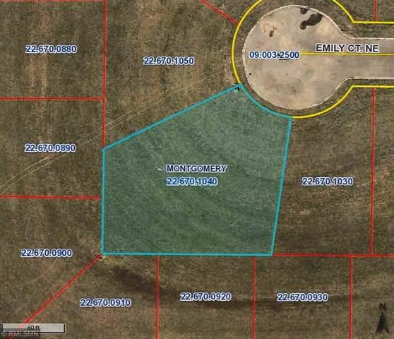 912 Emily Court NE, Montgomery, MN 56069 (#5331458) :: House Hunters Minnesota- Keller Williams Classic Realty NW