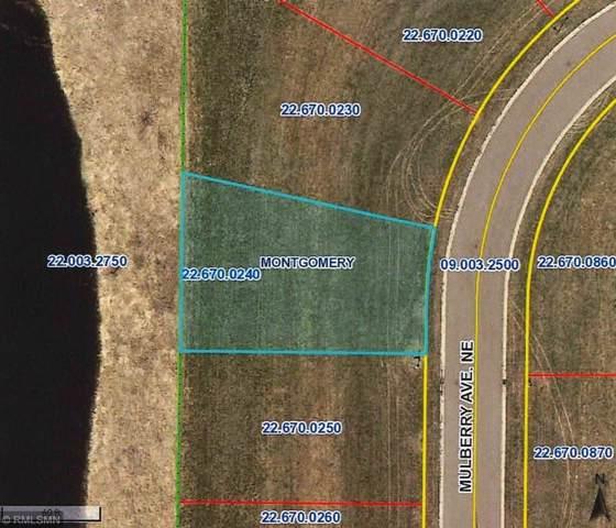 927 Mulberry Avenue NE, Montgomery, MN 56069 (#5331464) :: House Hunters Minnesota- Keller Williams Classic Realty NW