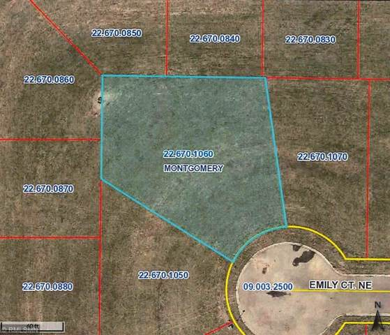 911 Emily Court NE, Montgomery, MN 56069 (#5331477) :: House Hunters Minnesota- Keller Williams Classic Realty NW