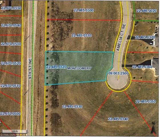 907 Amelia Court NE, Montgomery, MN 56069 (#5332128) :: The Michael Kaslow Team