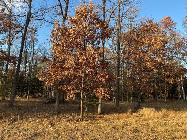 Lot3.Block1 Bald Eagle Trail, Crosslake, MN 56442 (#5332202) :: House Hunters Minnesota- Keller Williams Classic Realty NW