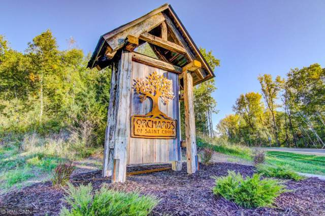 271 141st Avenue, Saint Joseph Twp, WI 54082 (#5333852) :: House Hunters Minnesota- Keller Williams Classic Realty NW
