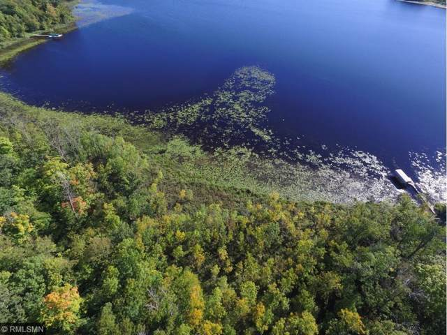 Lot 3 Vision Drive, Deerwood, MN 56444 (#5334765) :: The Michael Kaslow Team
