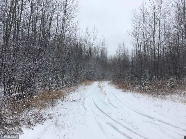 xxxx Forest Road 409, Two Harbors, MN 55616 (#5335813) :: Bre Berry & Company