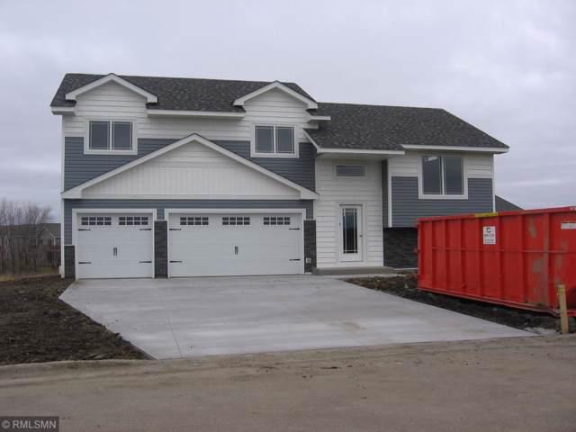 905 Burton Circle, Montrose, MN 55363 (#5335905) :: The Sarenpa Team