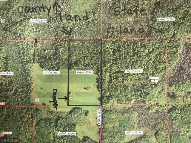 XXXX 120th Place, Tamarack, MN 55787 (#5336808) :: The Sarenpa Team