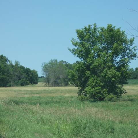 10355 County Road 52, Belle Plaine, MN 56011 (#5347254) :: Bre Berry & Company