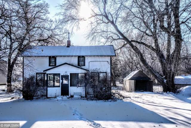 720 3rd Street, Currie, MN 56123 (#5347648) :: Bre Berry & Company
