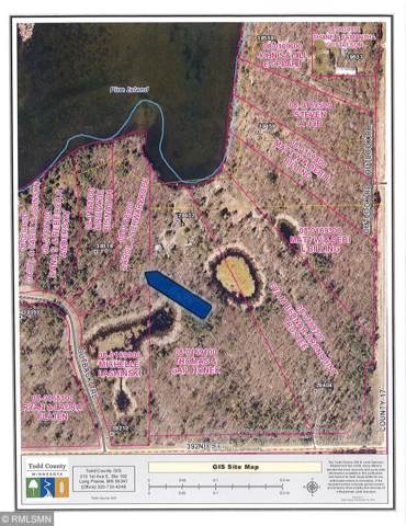 xxx Outback Trail, Browerville, MN 56438 (#5349528) :: Bre Berry & Company