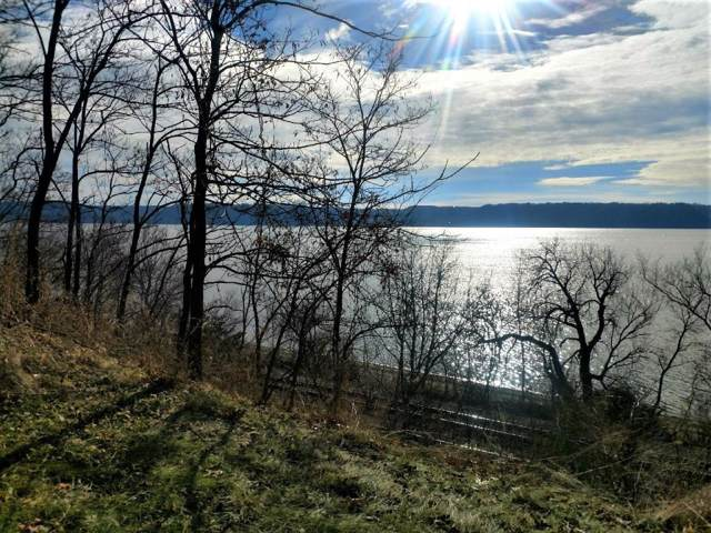 19 Acres State Highway 35, Pepin, WI 54759 (#5350708) :: The Michael Kaslow Team