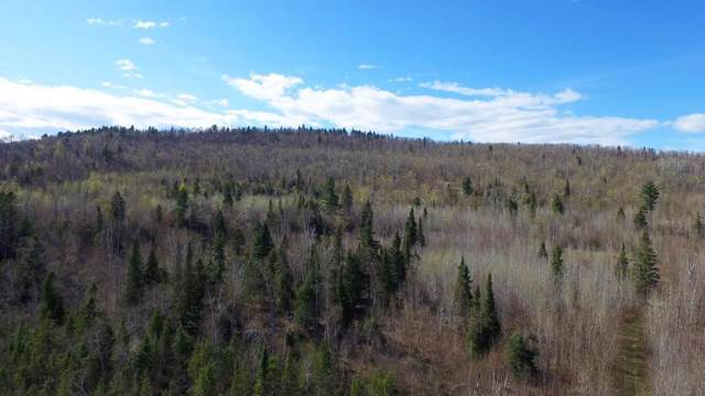 6775 Mountain Home Trail, Silver Bay, MN 55614 (#5352054) :: Bre Berry & Company