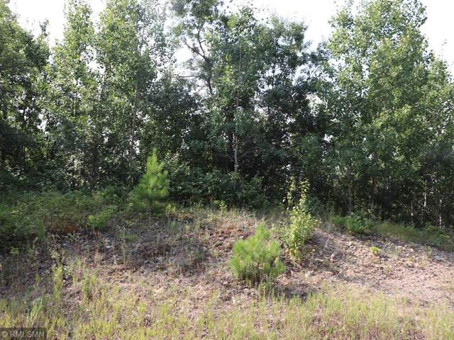 Lot 5 Fenwick Circle, Park Rapids, MN 56470 (#5352301) :: The Michael Kaslow Team